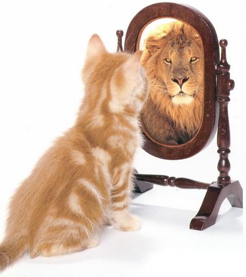 «Мудрая притча об уверенности в себе».