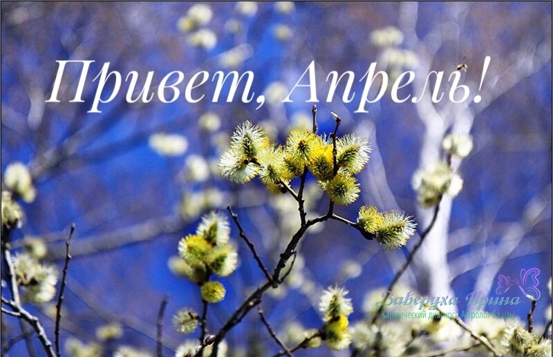 Беседка, апрель  Snapseed