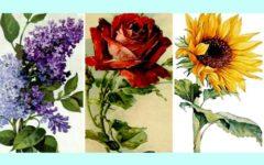 «Какой цветок вам больше всего нравится?» Интересный и точный тест — анализ о себе.