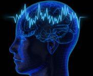 Несколько интересных фактов о том, как работает наш мозг.