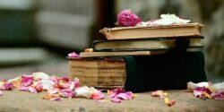 Книги, которые перевернут ваше сознание. Заметки родолога-консультанта.