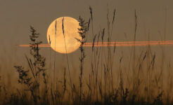 «Луна без курса» или «холостой ход Луны». Март 2021 года. Заметки астролога.