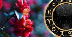Энерговлияние середины апреля 2021 года. Его особенность. Заметки астролога.